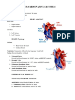 Cardiovascular-System (1).docx