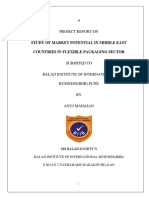 master project report (1).docx