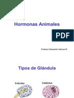 hormonas-1208209594030880-9 (PPTshare)