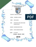 informe de laboratorio de absorcion.docx