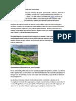 La cosmovisión en el desarrollo de la ciencia maya y enfermedades.docx
