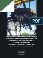 Destrucción de armas completo.pdf