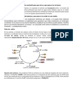 Clase4 Potenciación Cap02 Ejercicios