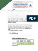4.1 Parametros Diseño Shillqui 01-02 Rosaspampa vf.pdf