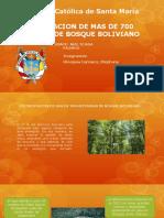 deforestacion de bosque boliviano