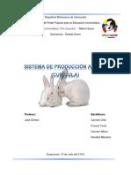 Trabajo_Sistema_de_Produccion_Cunicula.docx