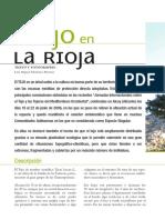 Dialnet-ElTejoEnLaRioja-2172997