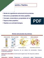 peptidos.pptx
