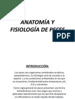 peces.pdf