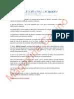 16 LA ELECCIÓN DEL CACHORRO Test - RPv.pdf