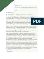 INVEDECOR CapituloVI VII VIII IXfebrerodefino