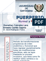 Puerperio Normal y Patologico 119802309093860 5 Ppt Share)