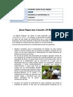 ROJAS_SHARENIN_solución_situación_problemática.docx