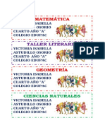 VICTORIA PRIMERO BASICO.docx