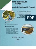 DIAGNÓSTICO-DE-LOS-RECURSOS-NATURALES-Y-PROPUESTA-DE-ALTERNATIVA-DEL-RÍO-ZAPATILLA.docx