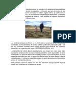 agro-economia.docx