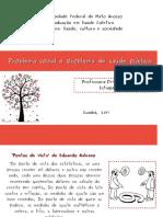 Aula_Problema Social e Problema de Saúde Pública