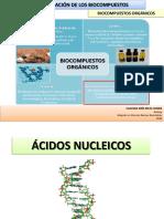 Ácidos nucleicos.pdf