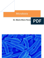 2 segmento parasito