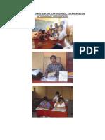 Análisis de Competencias, Capacidades, Estándares de Aprendizaje y Desempeño