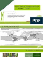 El Bambú, Una Mirada de Desarrollo de América Latina
