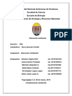 informe ambiental.docx