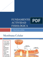 Fundamentos de la actividad fisiológica (la célula)
