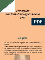 Principios Anatomofisiológicos de La Piel, Rodrigo Romero Bravo
