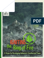 geothermal_report Igniting the Ring of Fire.pdf