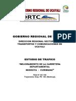 Inform_Estudio de Tráfico.docx