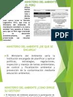 Derecho Ambiental Peru