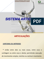 Aula Sistema Articular (1)