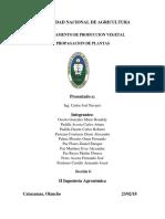 INFORME DE SEMILLA.docx