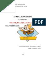 Evaluare sumativă 2019.docx