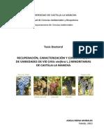 TESIS Mena Morales.pdf