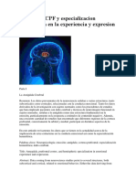 Amigdala.docx