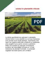 Horticultura Palade Florin.docx