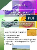 MODUL 6 Bazele Genetice Ale Producerii de Samanta