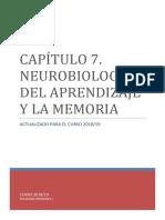 TEMA 7. Neurobiología Del Aprendizaje y La Memoria