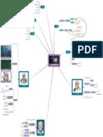 Filosofía mapa mental