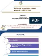 National_Roadmap_for_Nuclear_Power_Programme_-_B._Santoso_-_Indonesia.pdf