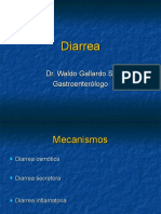 Clase 2 Diarrea Dr Gallardo 1216485767028953 9 Ppt Share)