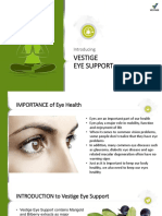 Eye Support Launch Ppt