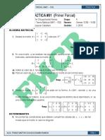Practica 01 MAT103 I-2019-2