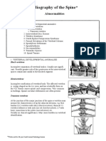 Radiography of the Spine