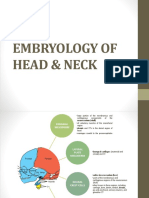 Embryology of Head & Neck