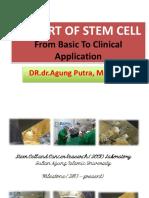 SCCR Institute-RISA-2017.pptx
