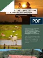 Armando Guedez Rodriguez_El Latido Del Llano