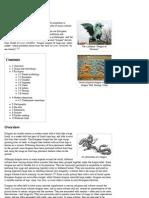 Dragon - Wikipedia, The Free Encyclopedia
