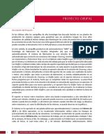 Enunciado proyecto-4 (1).pdf